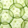 Do You Know Cucumbers Offer So Many Benefits?