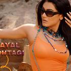 Sexy Indian Model Payal Rohatgi Wallpapers