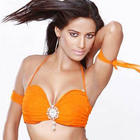 Super Sexy Bikini Babe Poonam Pandey Wallpapers