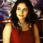 Lovely Gracy Singh Photos Gallery