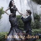 Twilight Saga Photo Gallery