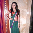 Sherlyn Chopra Hot Green Saree Still at Playboy Press Meet