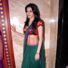 Sherlyn Chopra Hot Sizzling Pose In Green Saree At Playboy Press Meet