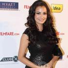 Bolly Beauties Attended 2012 Award Functions