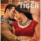 Ek Tha Tiger French Posters