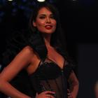 Bollywood Hotties At The Blenders Pride Fashion Tour 2012