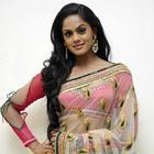 Karthika Nair Spicy Photos In Transparent Saree