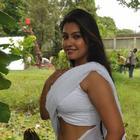 Tamil Actress Varsha K Pandey Hot Photo Shoot In Saree