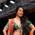 Blenders Pride Hyderabad International Fashion Week Photos
