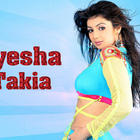 Bollywood Lovely Gorgeous Babe Ayesha Takia Latest Wallpapers