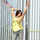 Tollywood Masala Actress Navneet Kaur Hot and Sexy Wallpapers