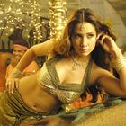 Hot Sexy Item Girl Kim Sharma Wallpapers