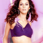 Mallika Sherawat Dazzling And Bold Wallpaper