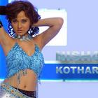 Cute Nisha Kothari  Hot and Sexy Wallpapers