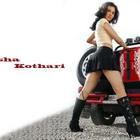 Hot Nisha Kothari Attractive Wallpapers and Photos