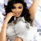 Chubby Star Ayesha Takia Phots And Wallpapers