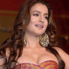 Sexy Bolly Beauty Amisha Patel Photos and Wallpapers