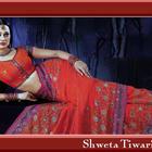 Actress And Anchor Shweta Tiwari Hot Wallpapers