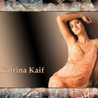 White Beauty Katrina Kaif Hot Gorgeous Wallpapers
