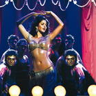 Bollywood Hot Queen Katrina Kaif Photos and Wallpapers