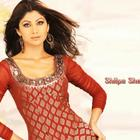 Nice Photos And Wallpapers Of Gorgeous Beauty Shilpa Shetty