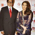 Aish In Net Saree With Amitabh