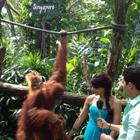 Bipasha Basu At The Singapore Zoo