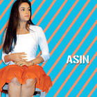 Stunning Babe Asin Thottumkal Photos and Wallpapers