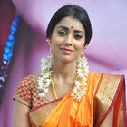 Shriya Saran In Saree New Photos