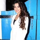 Bollywood Celebs At Dabboo Ratnanis Calendar Launch