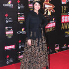 Bollywood Stars At 19th Annual Colors Screen Awards 2013