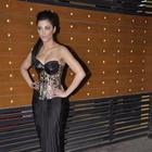 B-Town Hotties Galore At Filmfare Awards 2013
