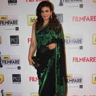 Bollywood Sizzling Beauties In Saree At 58th Filmfare Awards 2013
