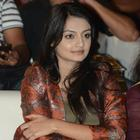 Nikitha Nice Photos At Back Bench Student Audio Release Function