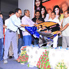 Telugu Movie Love Idiots Audio Launch Function
