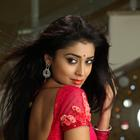 Pavitra Movie Shriya Saran Hot Stills