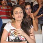 Hot Actresses At Park Movie Audio Release Function