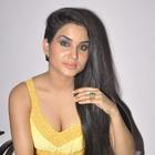 Kavya Singh Hot Stills At Half Boil Movie Audio Launch Function