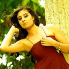 Bhanu Sri Mehra Hot Photoshoot Stills