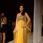 Celebs At Manish Malhotra's Show At LFW W/F 13