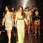 Mahi Gill At LFW 2013-Day 3 Show