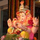 Tusshar Kapoor Celebrates Ganesh Chaturthi At His Residence