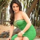 Ankita Sharma Hot Photos At NSR Films Movie Launch Event