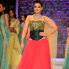 Bollywood Hotties Walk On Ramp At IIJW 2014