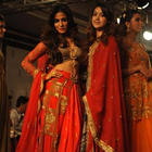 Chitrangada Singh Graced On Ramp At LFW Winter/Festive 2014