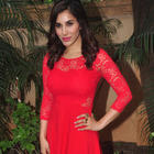 Sophie Choudry Press Meet For Her Pune CCIL Performance