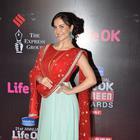 Bollywood Celebs At 21st Life Ok Screen Awards 2015