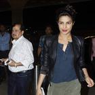 Find here! What Priyanka says about the status of Don 3