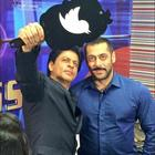 Tubelight,' features SRK in a very pivotal cameo alongside Salman
