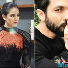 See the picture: Mira Rajput's Royal avatar will make your hearts skip a beat